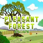 Pleasant Forest Escape