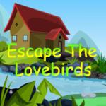 Escape The Lovebirds