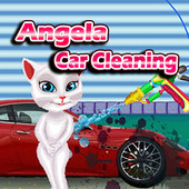 Angela Car Cleaning