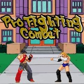Pro Fighting Combat