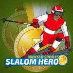 Winter Sports Slalom Hero